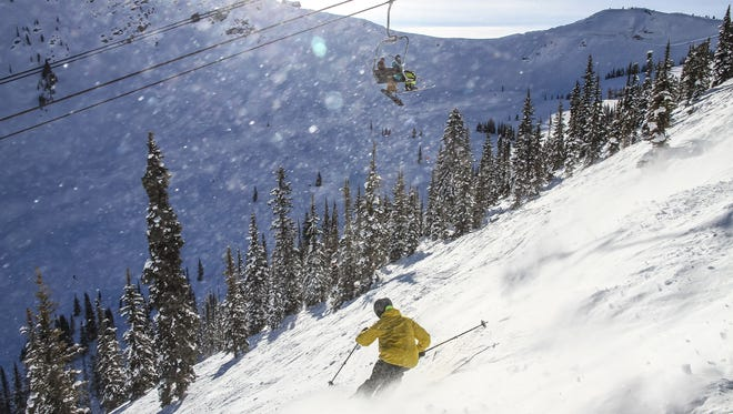 Emile Lavoie rips through terrain below the lift at Kicking Horse Mountain Resort. (Brad Kasselman/Chicago Tribune/TNS)