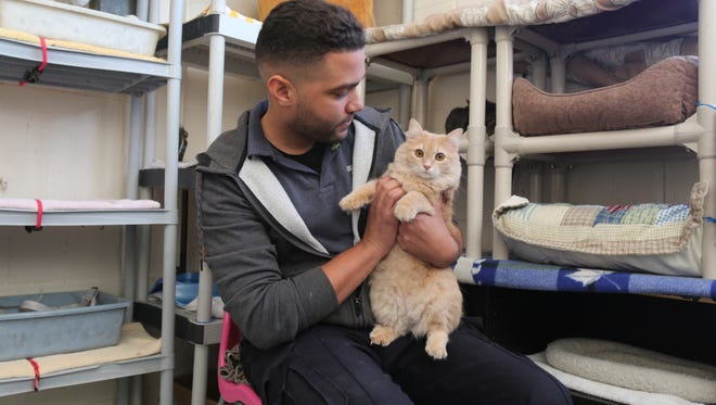 Shawn Carroll, the manager and animal warden at the Mount Vernon Animal Shelter sits with Nova the cat, March 17, 2017.