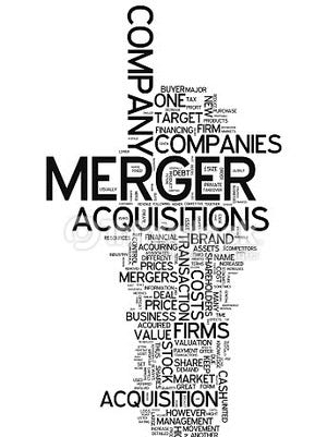 Richards Layton & Finger topped all Delaware firms in merger activity.