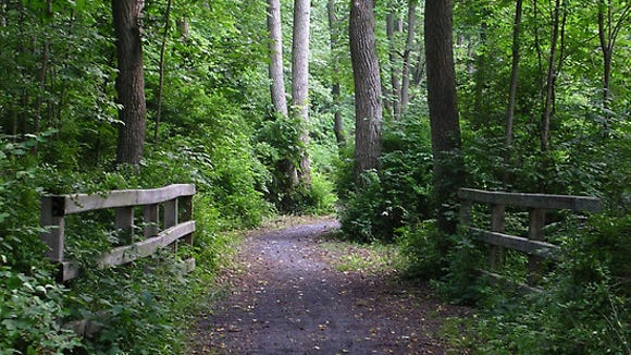 The Catharine Valley Trail.