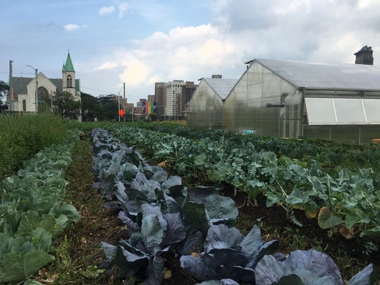 Detroit Urban gardens and farms tour