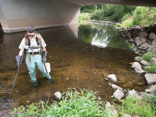 FILE - U.S. Fish and Wildlife Service Biologist Rebecca Phillips uses wire mesh paddles to run an electric current into the sediment of the East Twin River out of Mishicot to search for invasive sea lamprey larvae.