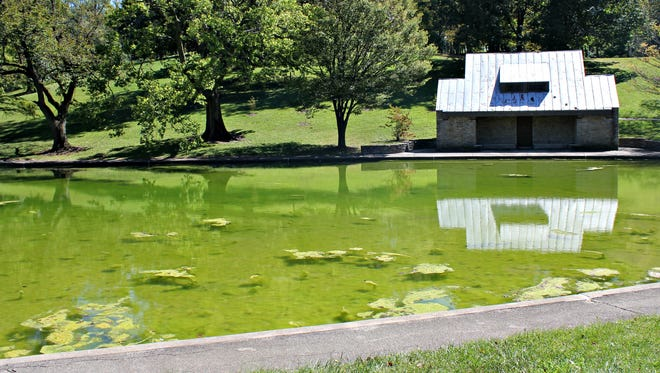 On a September day the pond at Inwood Park in Mount Auburn was thick with algae. Beyond, the bathroom facility is falling into disrepair.