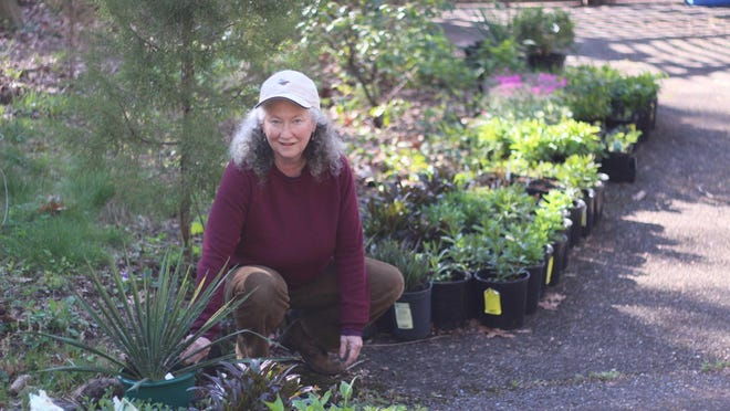 Westchester Community College professor and native plant expert Carolyn Summers will be the keynote speaker for Cornell Cooperative Extension of Ulster County Master Gardeners annual Garden Day, which will be held April 16.