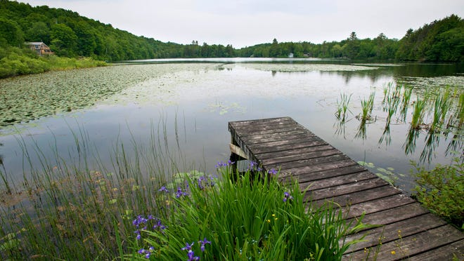 The state has pass a new shore land development law effective July 1. Curtis Pond in Calais on Tuesday, June 24, 2014.