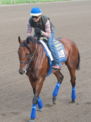 American Pharoah takes a walking lap around the track on Thursday.