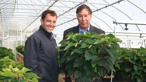 """USDA Under Secretary Edward Avalos with Barlow Flower Farm owner, Stephen Barlow, holding a """"Jersey Grown"""" poinsettia in one of Barlow's production greenhouses."""