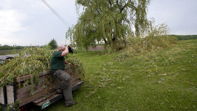 Jason Whittemore wipes his brow after loading a tractor with storm debris from a willow on his Bridport property.  Heavy winds whipped through the area on Tuesday afternoon causing power outages and downed trees.