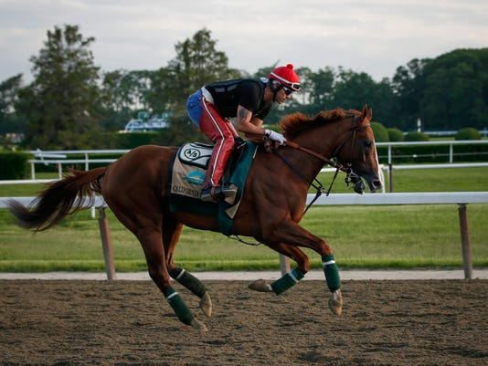 Kentucky Derby and Preakness Stakes 2014 winner California Chrome gallops during morning workouts at Belmont Park in Elmont