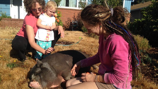 Lisa Oaks (left) and her granddaughter Mattison greet Willow the pig while owner Bri Kampstra (right) looks on.