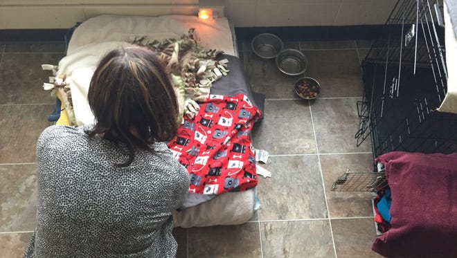 Beth Schnorr, executive director of Harbor House in Appleton, pets a dog who is staying in the shelter along with a victim of domestic abuse.