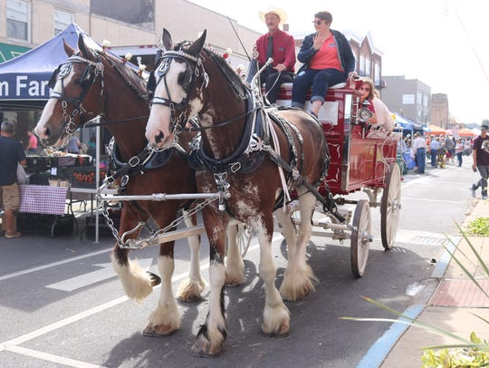 "Clydesdales were part of the last Downtown Fremont Farmers Market of 2017, which closed with a ""Harvest Happenings"" theme."