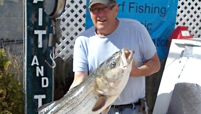 Merle Van Liere with a 34 pound bass caught in Beach Haven on bunker. Merle said he fought this fish for over 20 minutes.