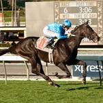 Bolo, running on turf, won Santa Anita's Dec. 27 Eddie Logan Stakes.