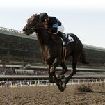 2-year-old champion Shared Belief, with jockey Corey Nakatani, wins the Grade III Hollywood Prevue Stakes.