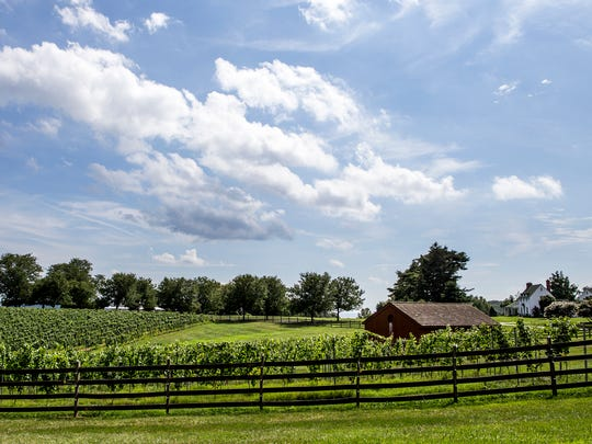 The Elk Manor Winery in North East, Md. on Wednesday