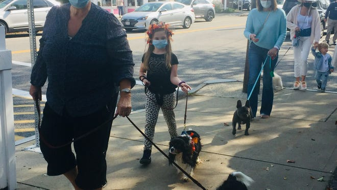 A socially distanced dog parade opened Osterville Village Fest last Saturday.