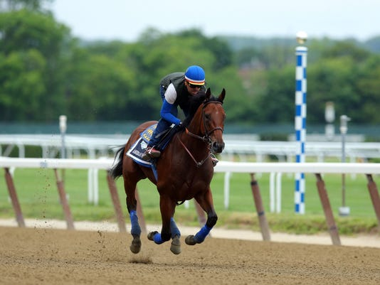 USP HORSE RACING: BELMONT STAKES SCENES S RAC USA NY