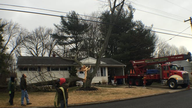 Crews work to remove a tree that fell on top of a Neptune Township home during a tornado watch on Feb. 24.