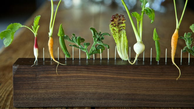 Vegetables on a Fence is a signature dish at Blue Hill at Stone Barns. It highlights the freshest produce from the Stone Barns Center for Food & Agriculture.