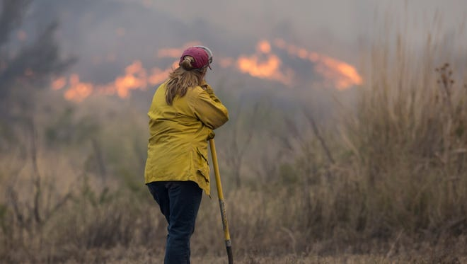 OMAK, WA - AUGUST 22: A spotter keeps and eye on a wildfire, which is part of the Okanogan Complex, as it burns brush on August 22, 2015 near Omak, Washington. The fires have burned more tha 127,000 acres. (Photo by Stephen Brashear/Getty Images)