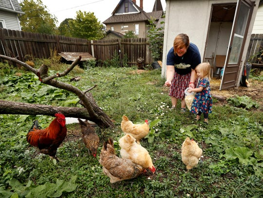 Tanya Keith, of Des Moines, and her daughter Iolana feed their chickens in the backyard of their home in Des Moines. The trend of raising backyard chickens is causing a soaring number of illnesses from poultry-related diseases.