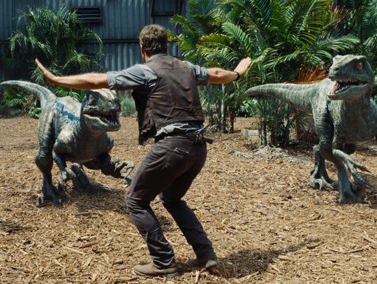 Chris Pratt plays a raptor trainer in 'Jurassic World.'