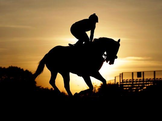 AP APTOPIX  PREAKNESS HORSE RACING S RAC USA MD