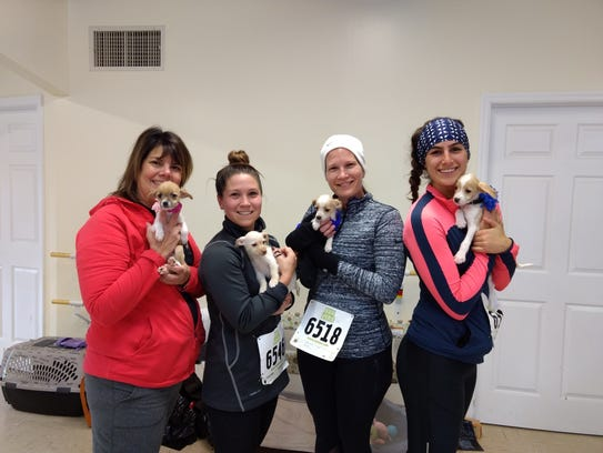 H.A.L.O.'s Chase Your Tail 5K Walk/Run participants