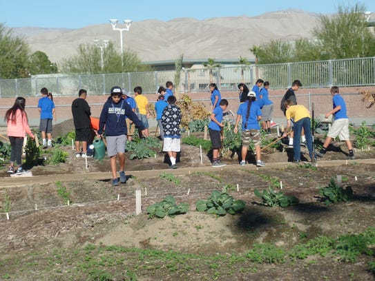 Desert Sands Schools Dish Farm To Table Lessons