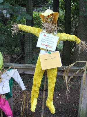 The Banana Bandit scarecrow, created by students from Mrs. McCloud's class at Broad Street School.