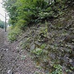 The potential site where a Nazi gold train is believed to be hidden, near the city of Walbrzych, Poland.