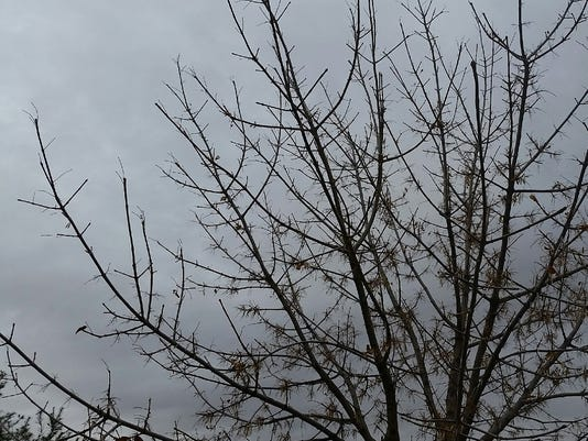 Wintry weather 2