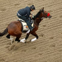 Video | Drone footage of Nyquist morning workout at Pimlico