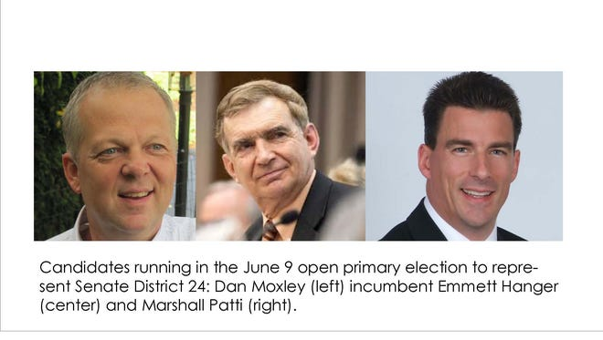 District 24 Senate candidates