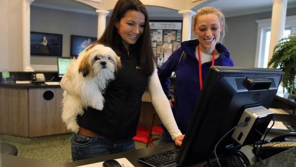 Betsy Palazzo-Dudick, left, of Monmouth Beach, co-owner of Purr 'N Pooch, and pet technician Tammy Kohanski of Middletown scroll through the Purr 'N Pooch Facebook page.