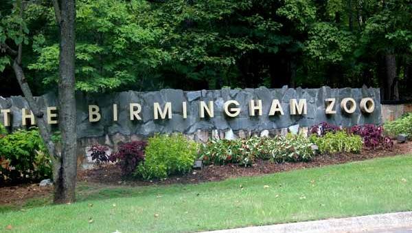The Birmingham Zoo will undergo a $15 million renovation.
