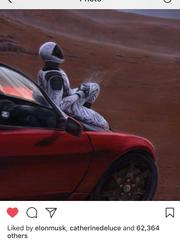 "Elon Musk ""liked"" UD graduate Peter DeLuce's artwork on Instagram."