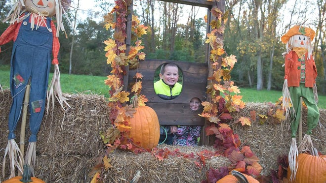 Halloween fun at the Haunted Forest in Coldwater will be Thursday-Saturday evenings at Rotary Park.
