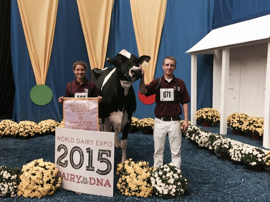 Whitney and Jordan Ebert and their winning cow, Kingsmill