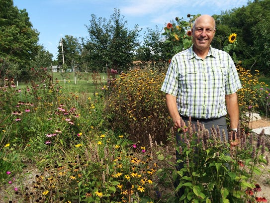 Don Gustafson stands in the middle of his native plants