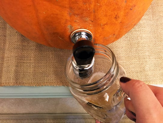 It's more fun to get a drink from a pumpkin.