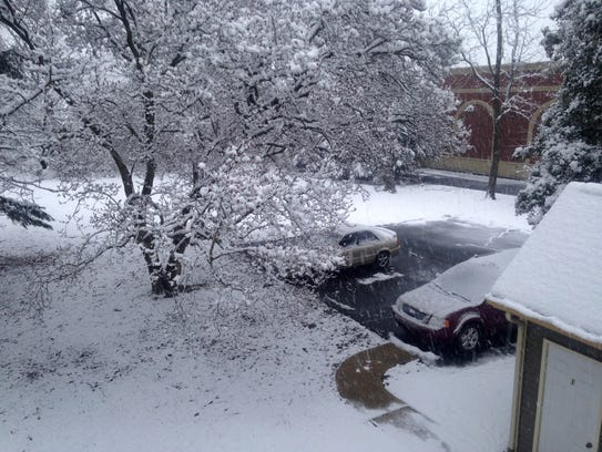 A blanket of wet snow covers many parts of Delmarva