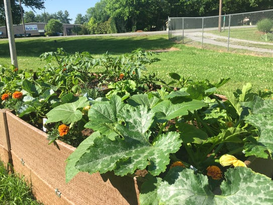 Lutheran Services in Tennessee put in a raised-bed