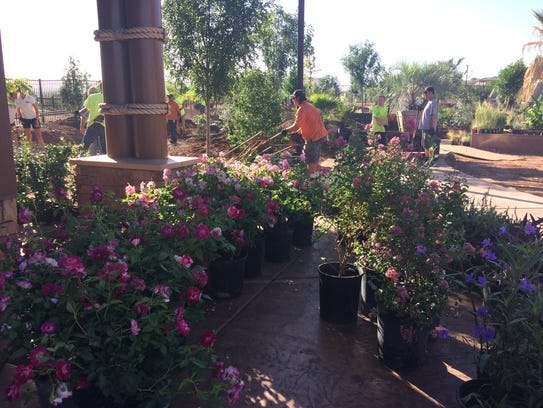 Flowers adorn the garden section of the All Abilities