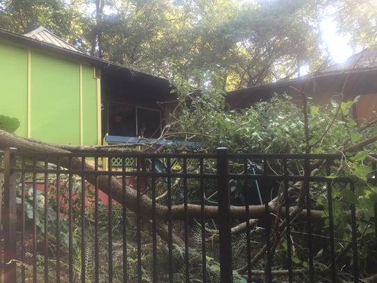 A tree damaged the preschool playground at the Tallahassee