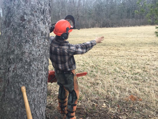 Travis Bessette points to where he wants the tree he's