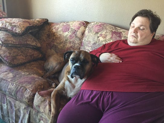 Bubba the boxer dog  snuggles on the couch with his