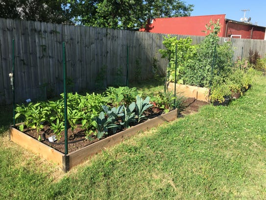 The nonprofit GM-NO built raised-bed gardens and provided