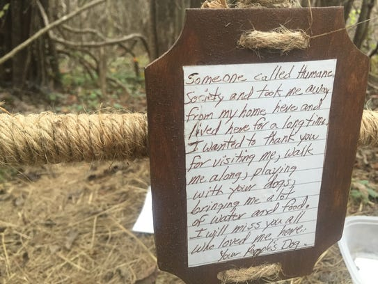 A cross has been left in the woods where Shep lived and was fed by multiple members of the community.